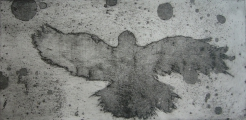 <h5>Crow Surveys The World</h5><p>Etching & Aquatint 18cm x 38cm</p>