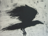 <h5>Speed Crow</h5><p>Etching 45cm x 60cm</p>