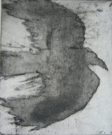 <h5>In Full Flight</h5><p>Etching & Aquatint 19.5cm x 16cm</p>