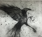 <h5>BLACKSTAR</h5><p>Limited Edition Etching #50  49.9cm x 61cm</p>